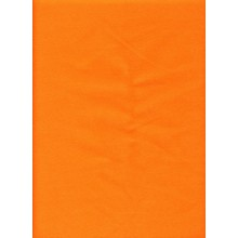 Solid Orange Cover